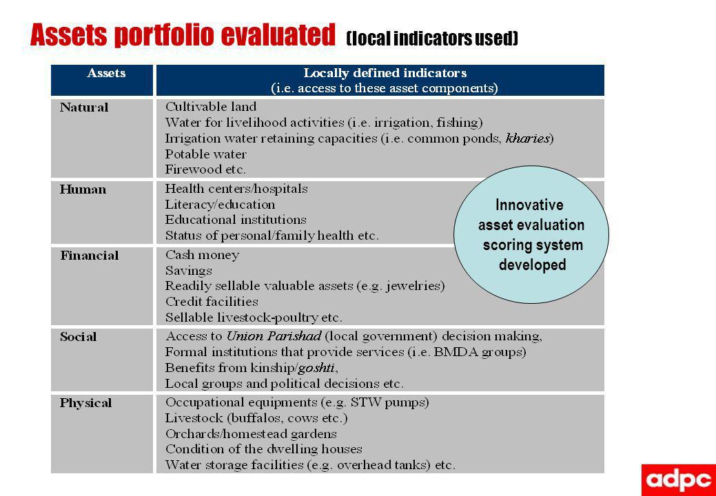 Assets portfolio evaluated (local indicators used)