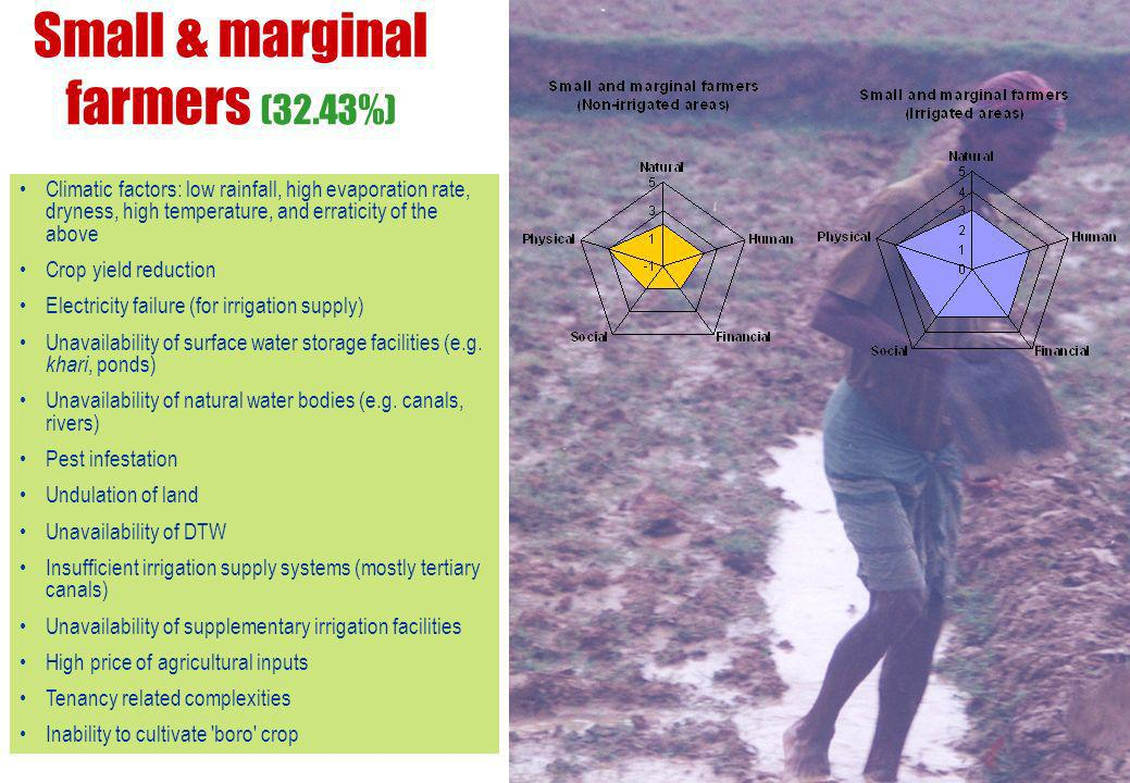 Small & marginal farmers (32.43%)