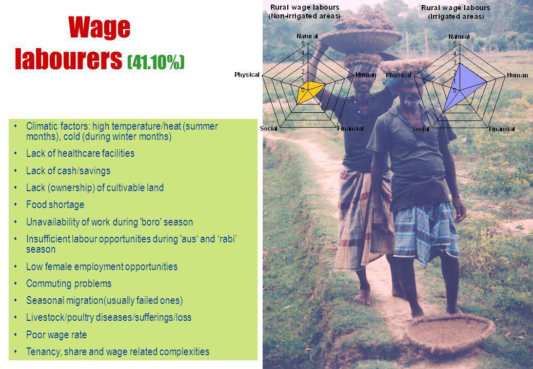 Wage labourers (41.10%) Climatic factors: high temperature/heat (summer months), cold (during winter months)