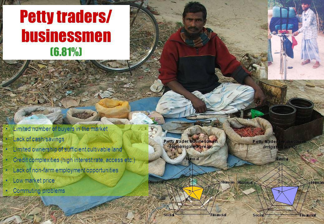 Petty traders/ businessmen (6.81%)
