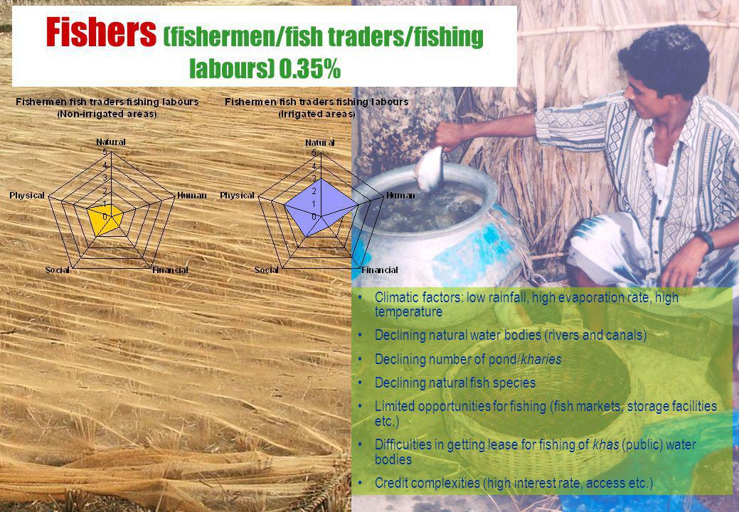 Fishers (fishermen/fish traders/fishing labours) 0.35%