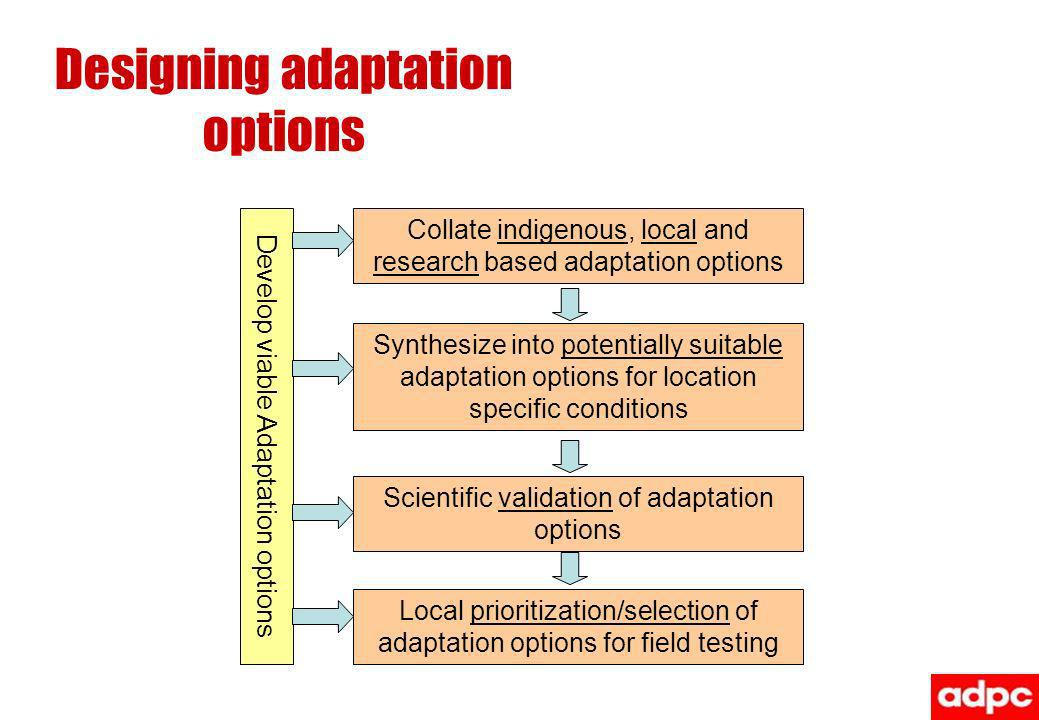 Designing adaptation options