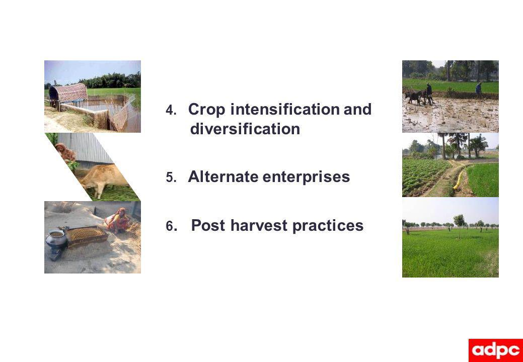 4. Crop intensification and diversification