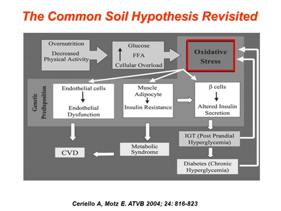 The Common Soil Hypothesis Revisited