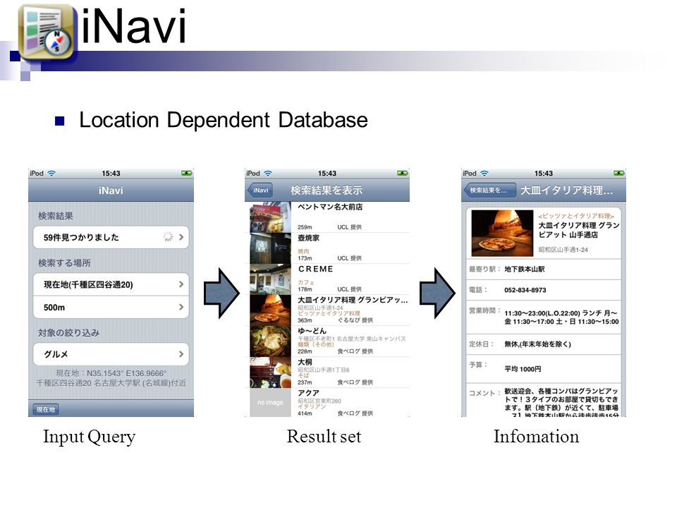 iNavi Location Dependent Database Input Query Result set Infomation
