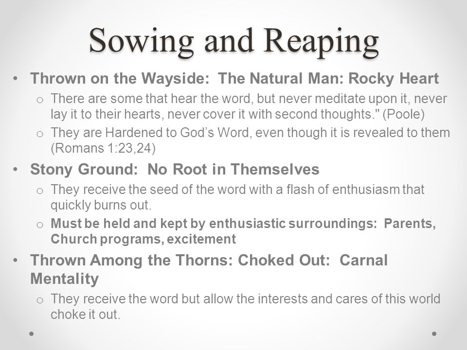 Sowing and Reaping Thrown on the Wayside: The Natural Man: Rocky Heart