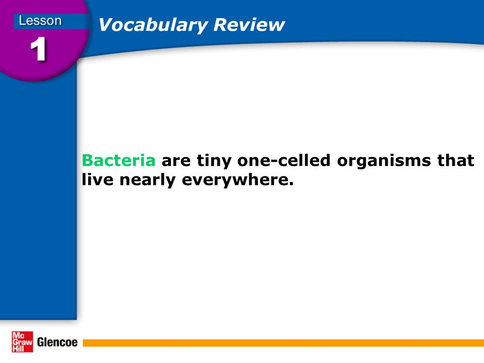 Vocabulary Review Bacteria are tiny one-celled organisms that live nearly everywhere.