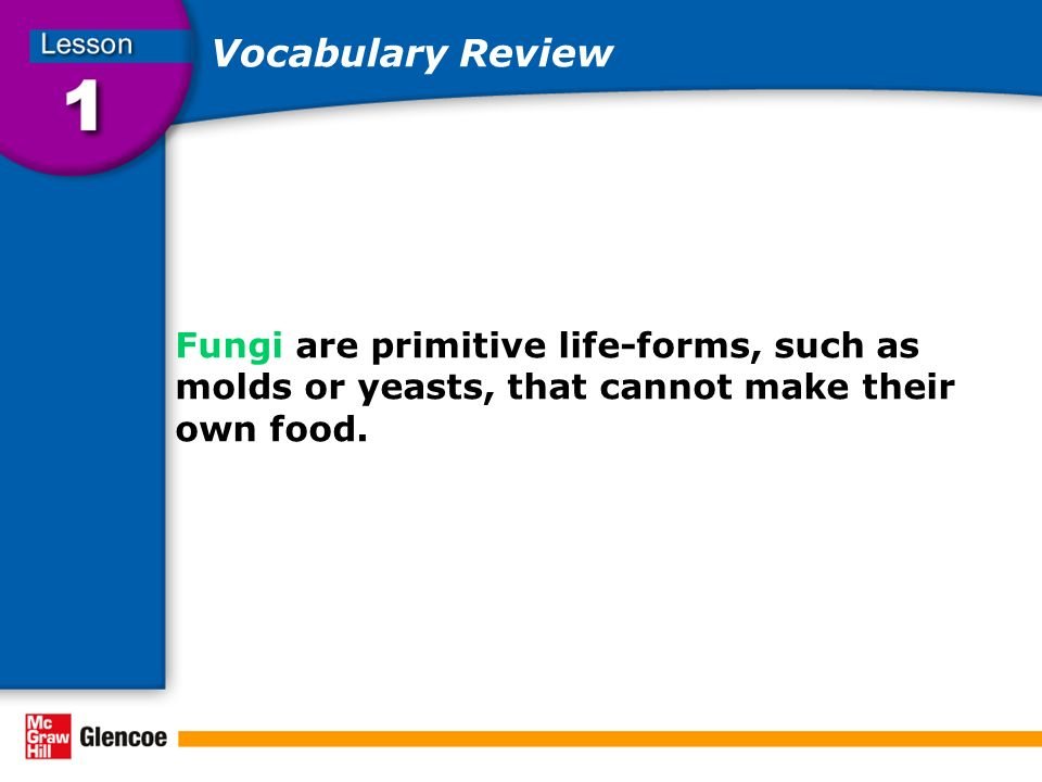 Vocabulary Review Fungi are primitive life-forms, such as molds or yeasts, that cannot make their own food.