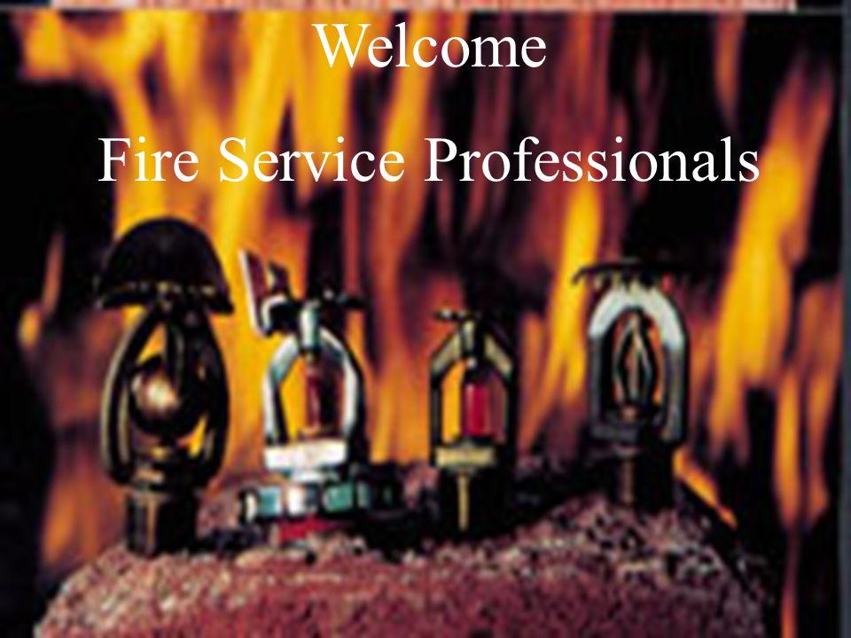 Fire Service Professionals