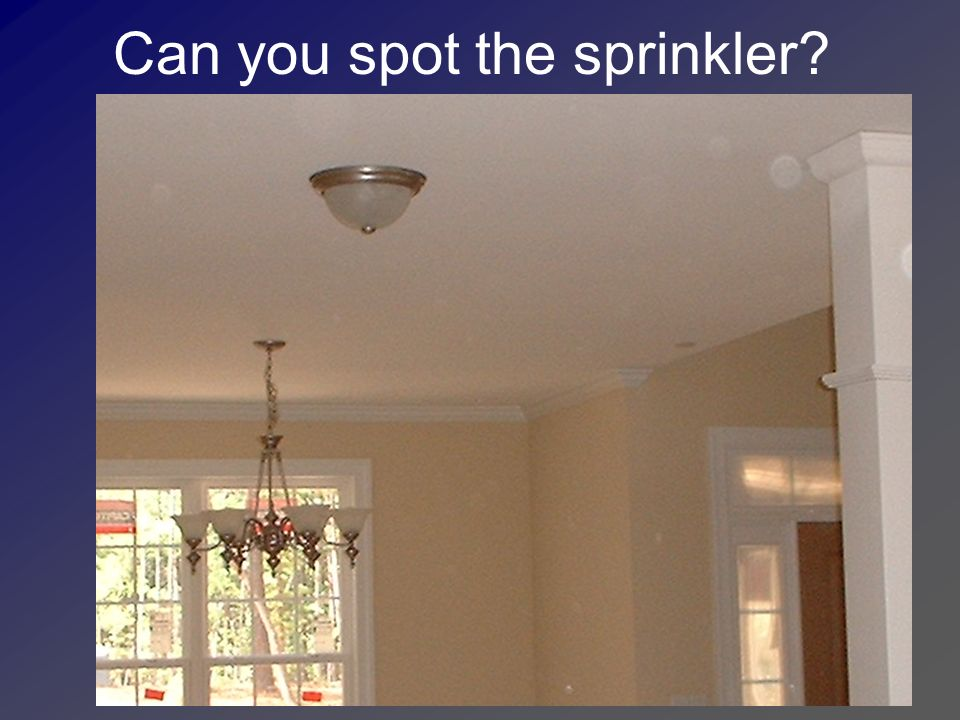 Can you spot the sprinkler