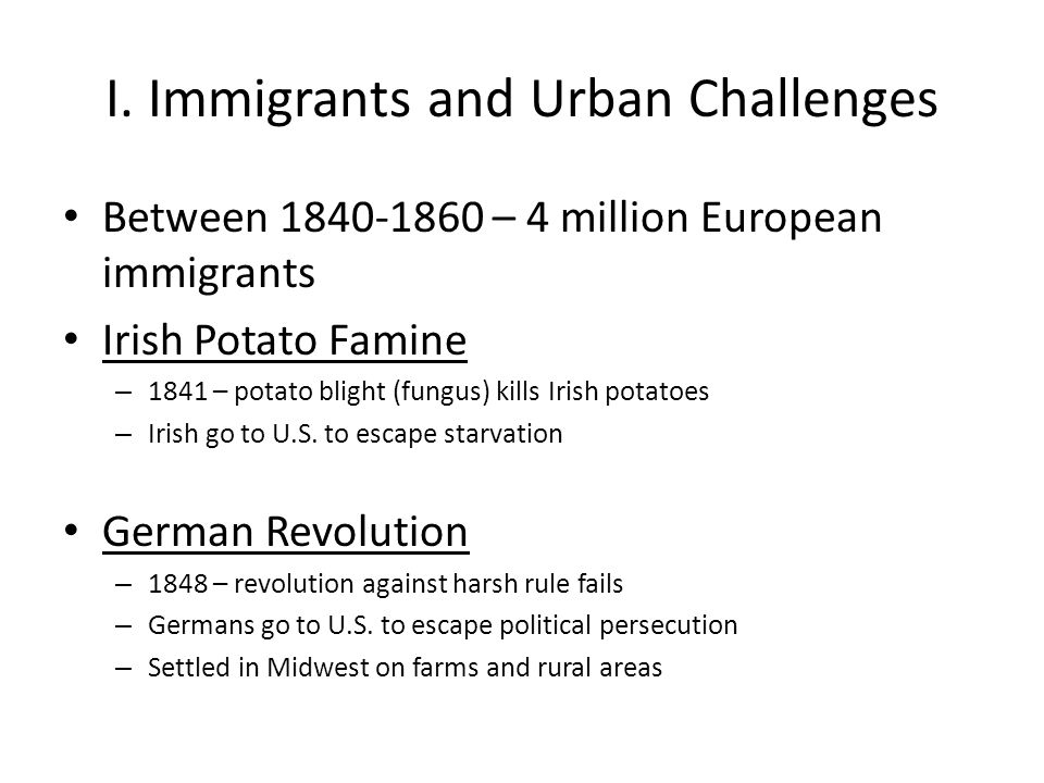 I. Immigrants and Urban Challenges