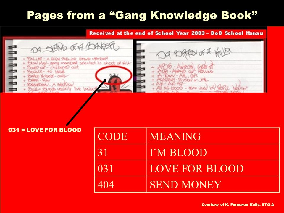 Pages from a Gang Knowledge Book