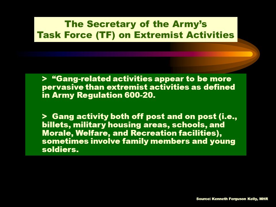 The Secretary of the Army's Task Force (TF) on Extremist Activities