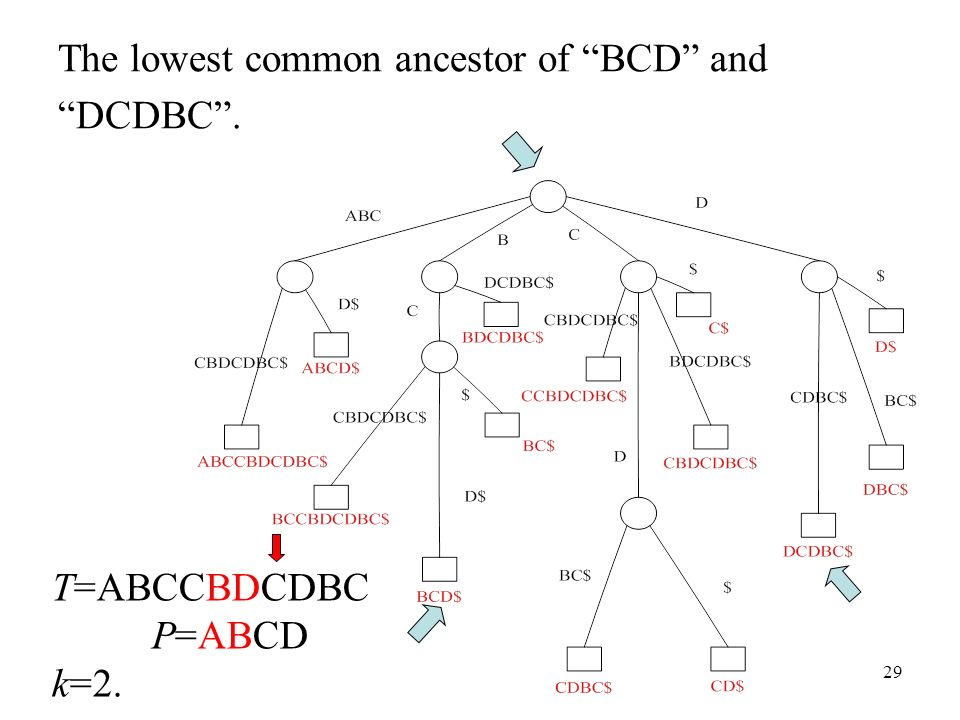 The lowest common ancestor of BCD and