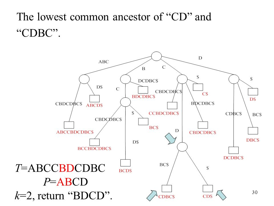 The lowest common ancestor of CD and