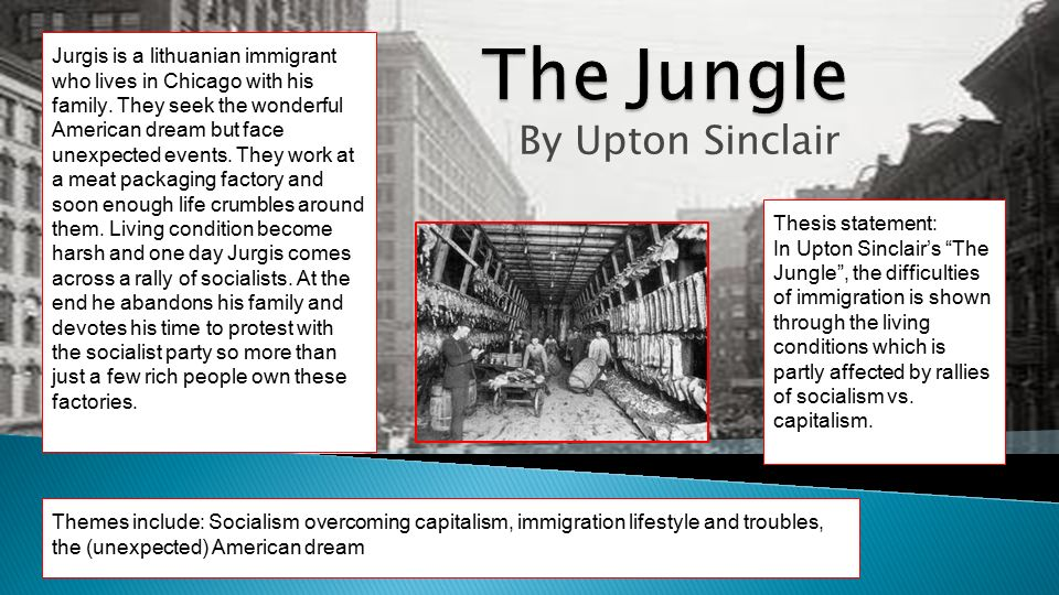 the hardships of new immigrants in the jungle by upton sinclair