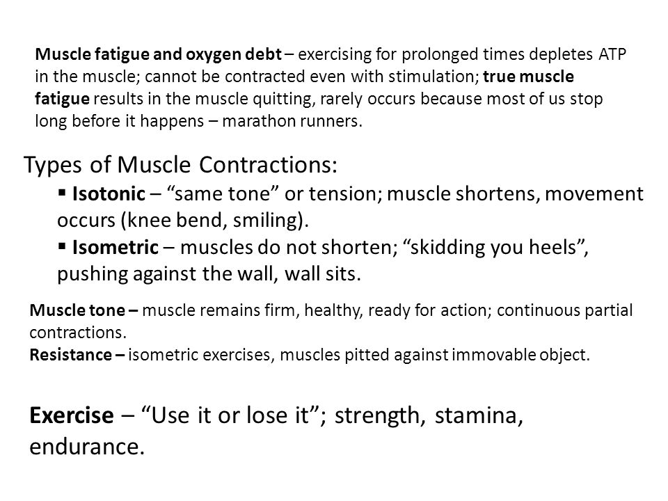 Types of Muscle Contractions: