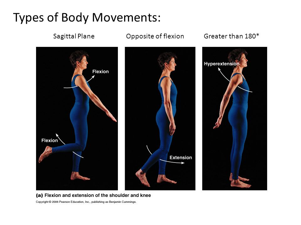 Types of Body Movements: