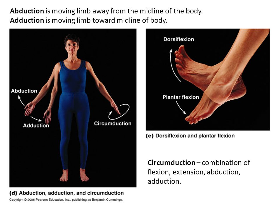 Abduction is moving limb away from the midline of the body