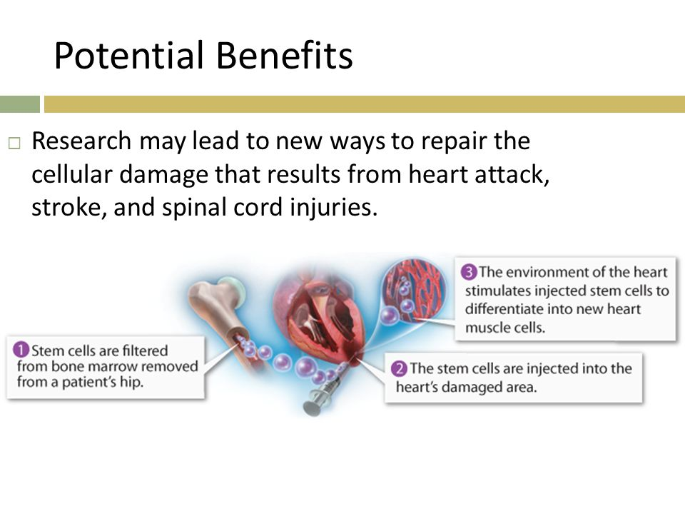 Potential Benefits Research may lead to new ways to repair the cellular damage that results from heart attack, stroke, and spinal cord injuries.