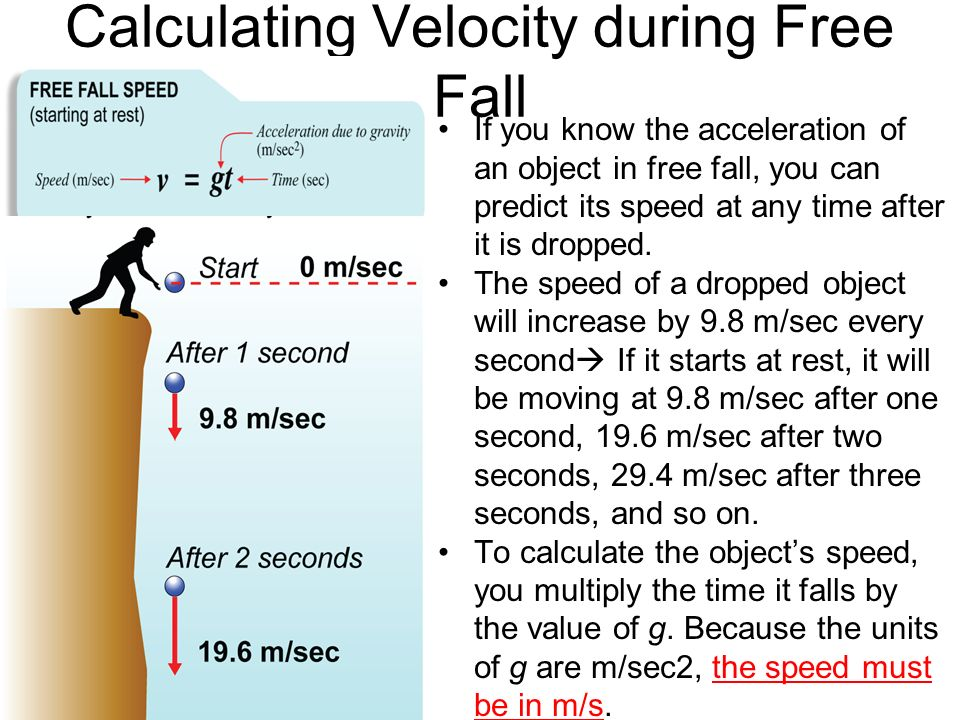 calculating free fall acceleration Experiment p007: acceleration due to gravity (free fall adapter) equipment needed science workshop™ interface clamp, right angle base and support rod.