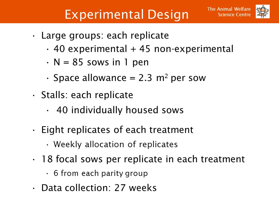 Experimental Design Large groups: each replicate