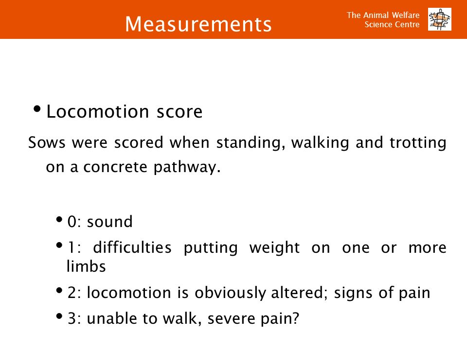 Measurements Locomotion score