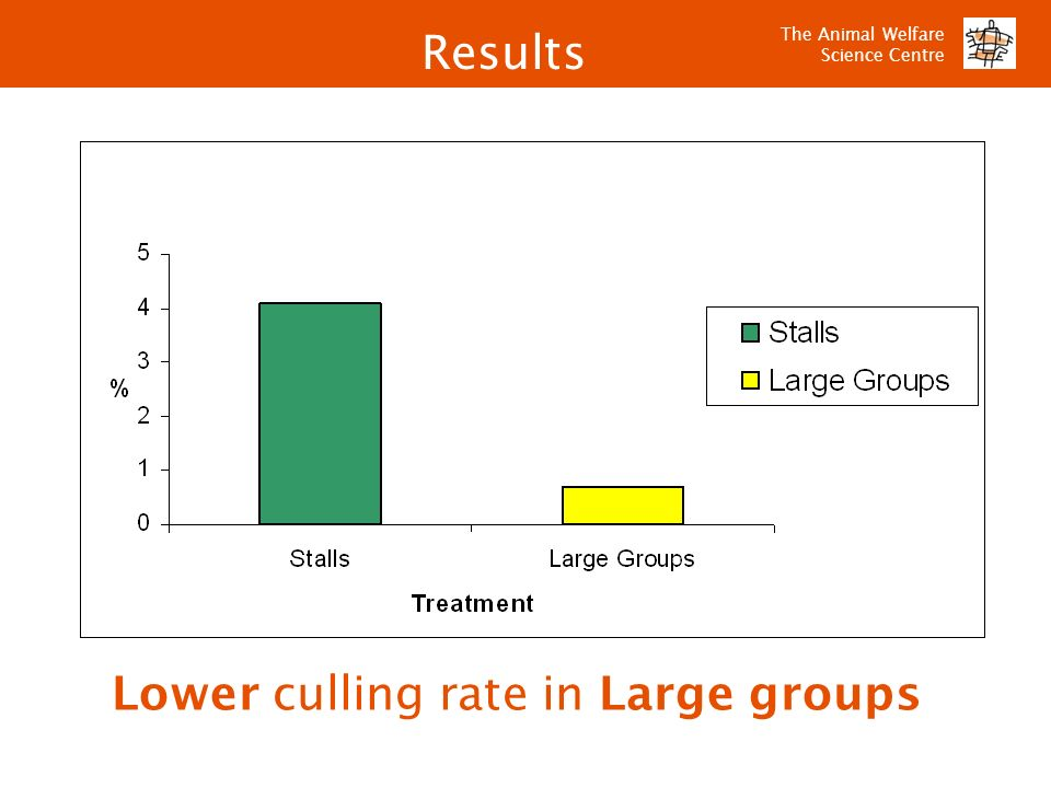 Lower culling rate in Large groups