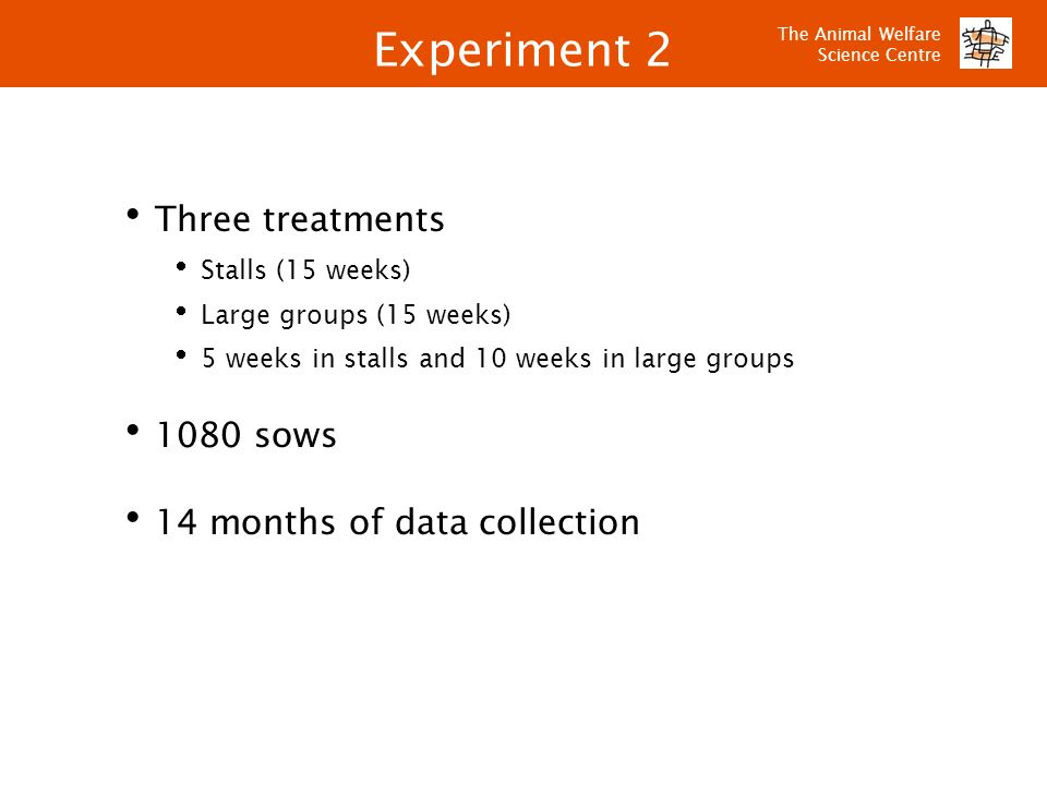 Experiment 2 Three treatments 1080 sows 14 months of data collection