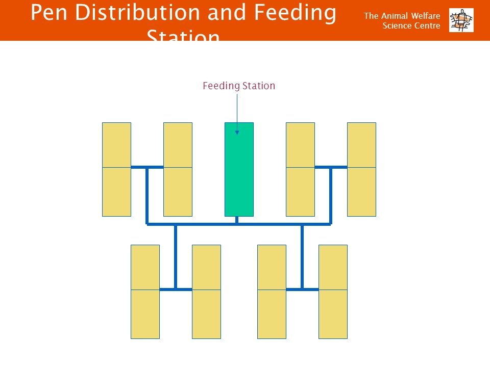 Pen Distribution and Feeding Station