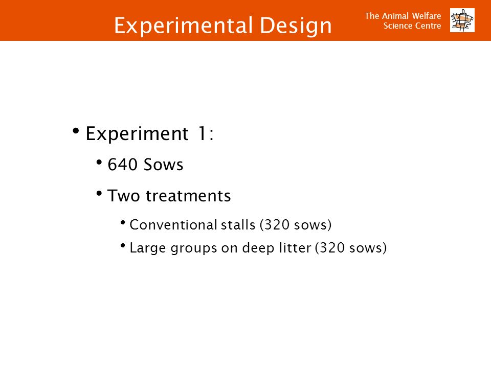 Experimental Design Experiment 1: 640 Sows Two treatments