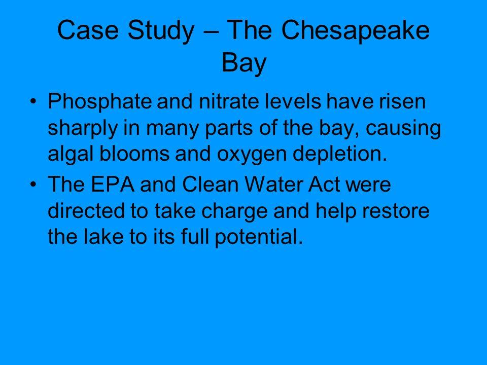 e bay case study