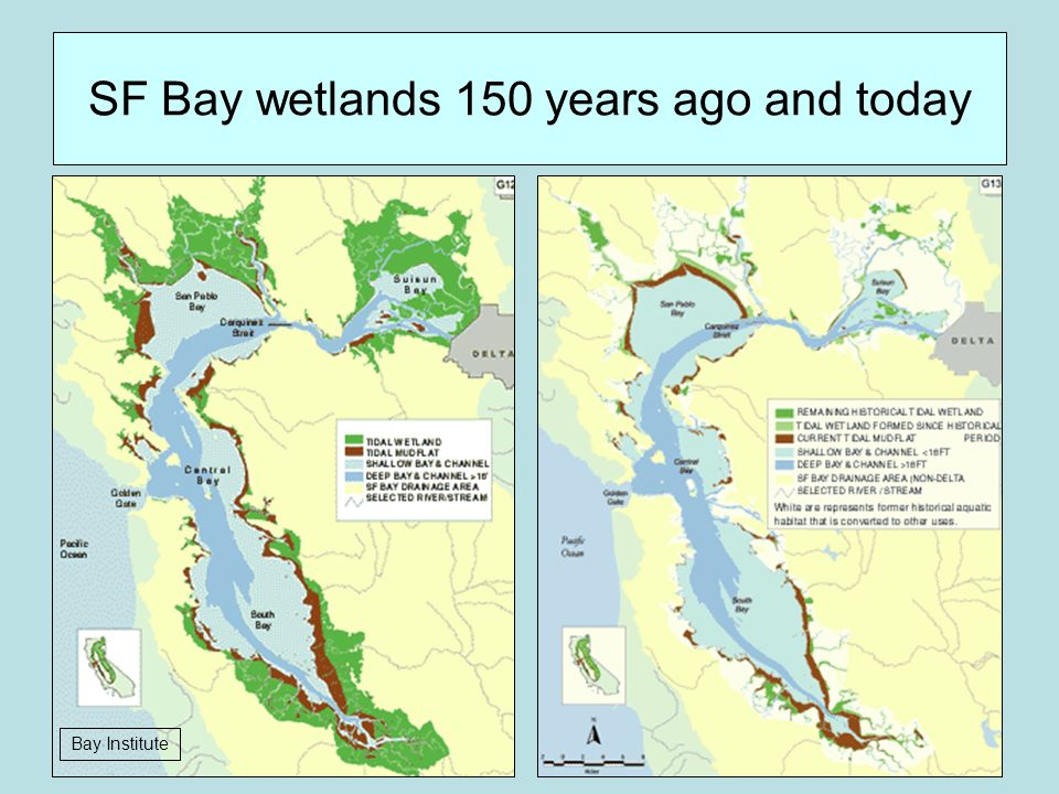 SF Bay wetlands 150 years ago and today