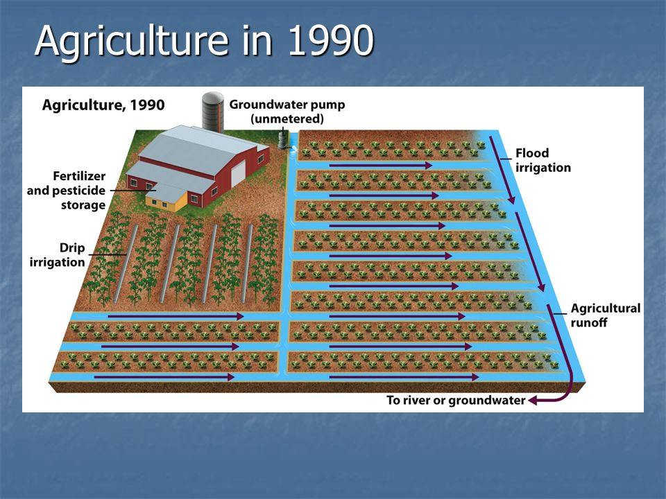 Agriculture in 1990