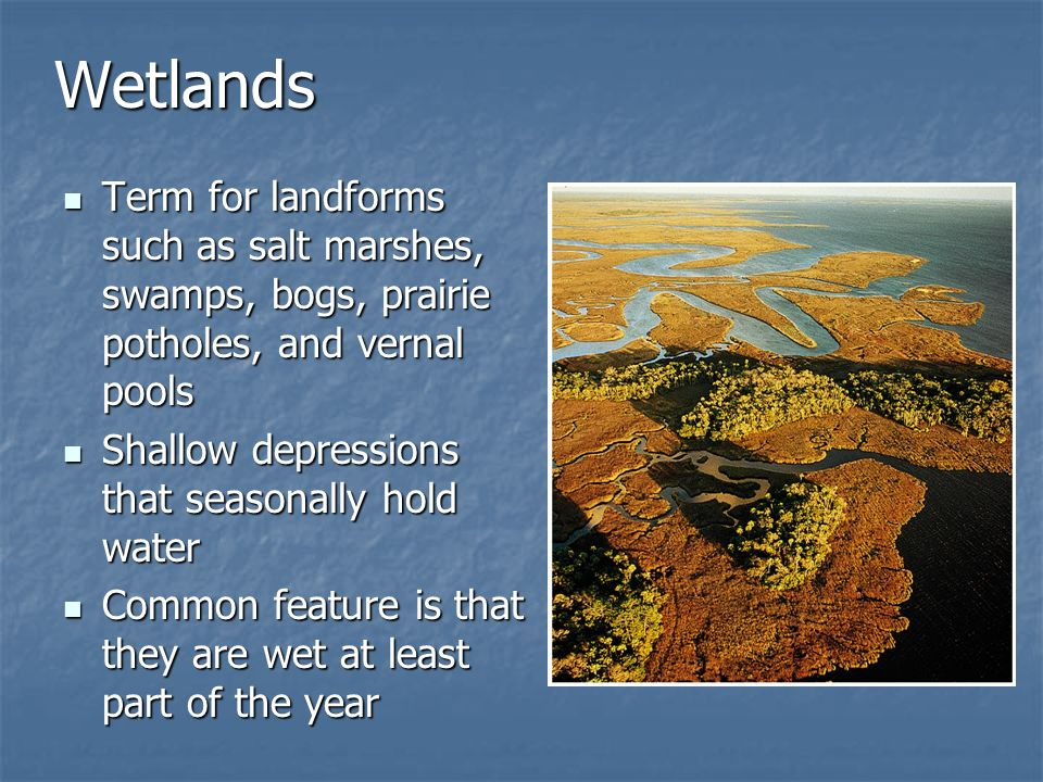Wetlands Term for landforms such as salt marshes, swamps, bogs, prairie potholes, and vernal pools.