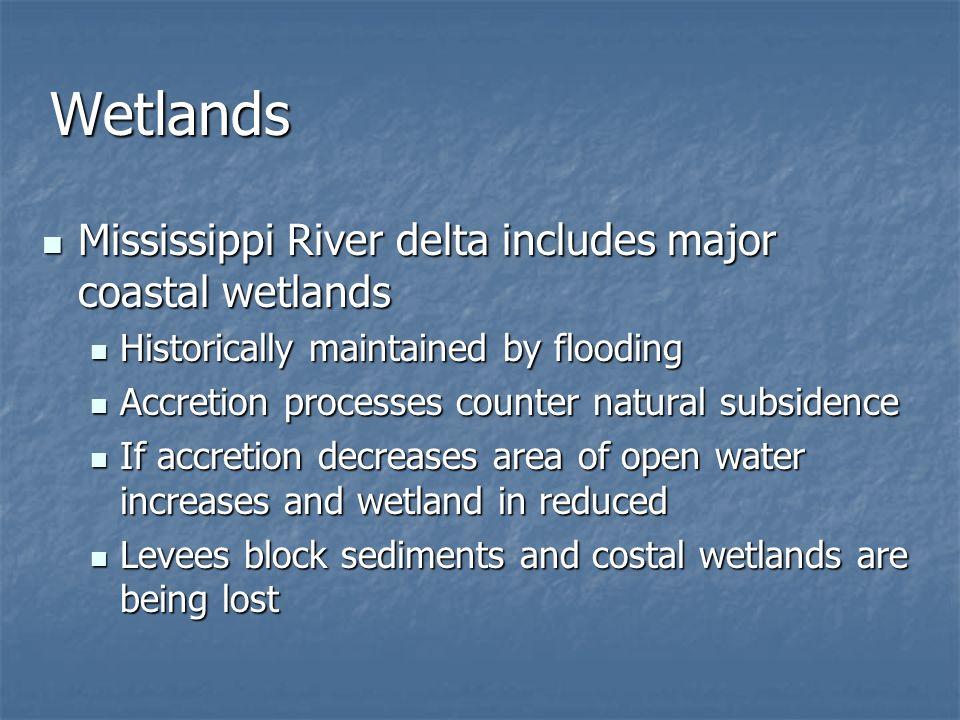 Wetlands Mississippi River delta includes major coastal wetlands