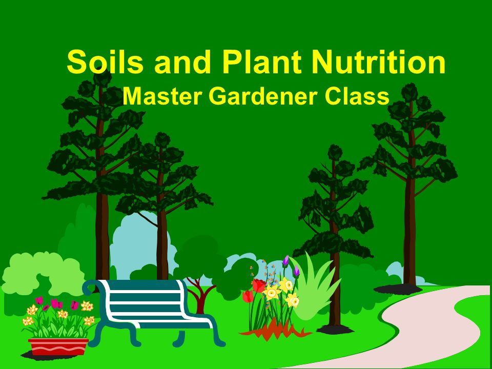 Soils And Plant Nutrition Master Gardener Class Ppt Download
