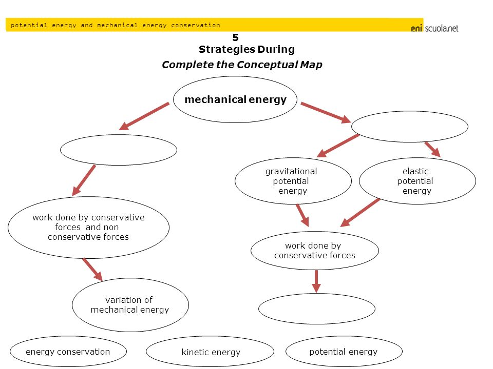Complete the Conceptual Map