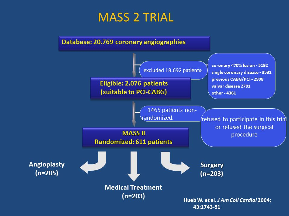 Database: coronary angiographies (suitable to PCI-CABG)