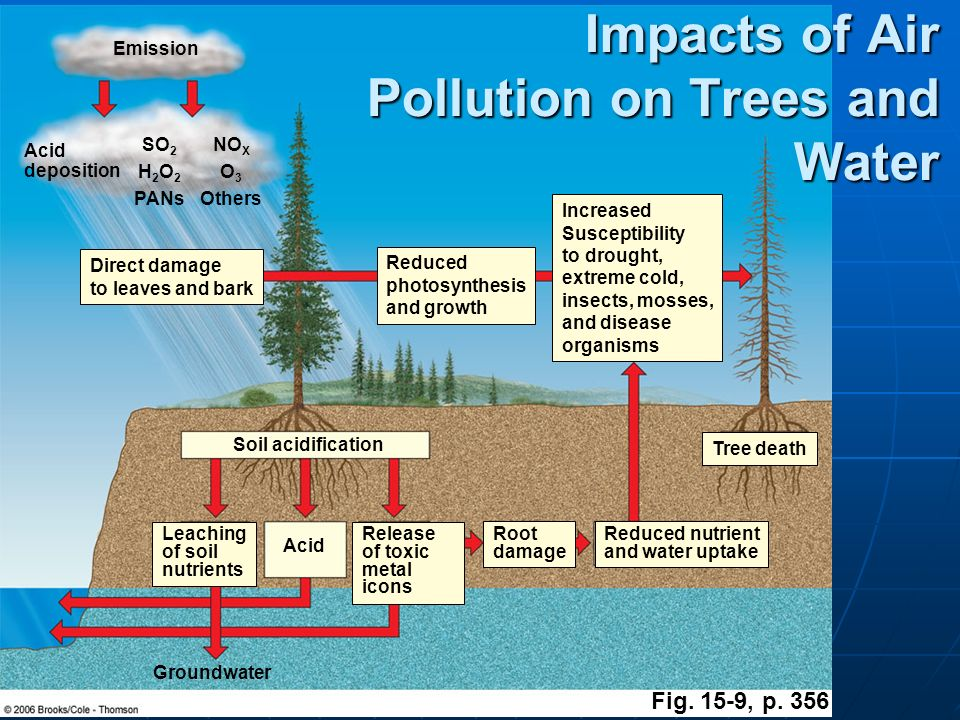 water and air pollution pdf