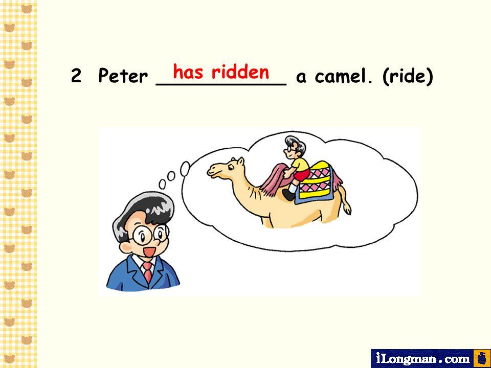 has ridden 2 Peter ___________ a camel. (ride)