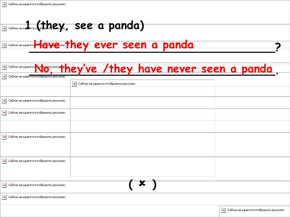 Have they ever seen a panda