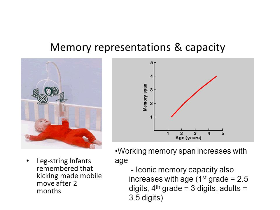 memory span capacity Memory span and processing speed both increase with development but are   note—table means include only those individuals whose memory spans were.
