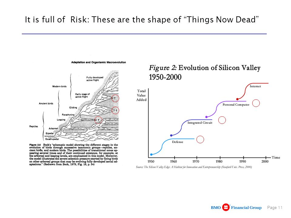 It is full of Risk: These are the shape of Things Now Dead