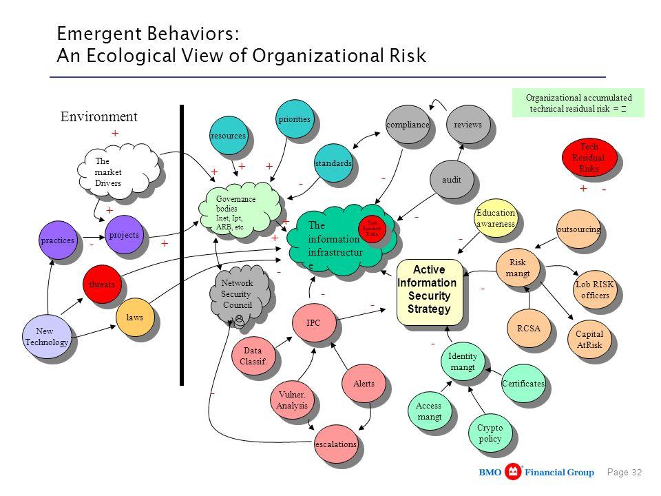 Emergent Behaviors: An Ecological View of Organizational Risk