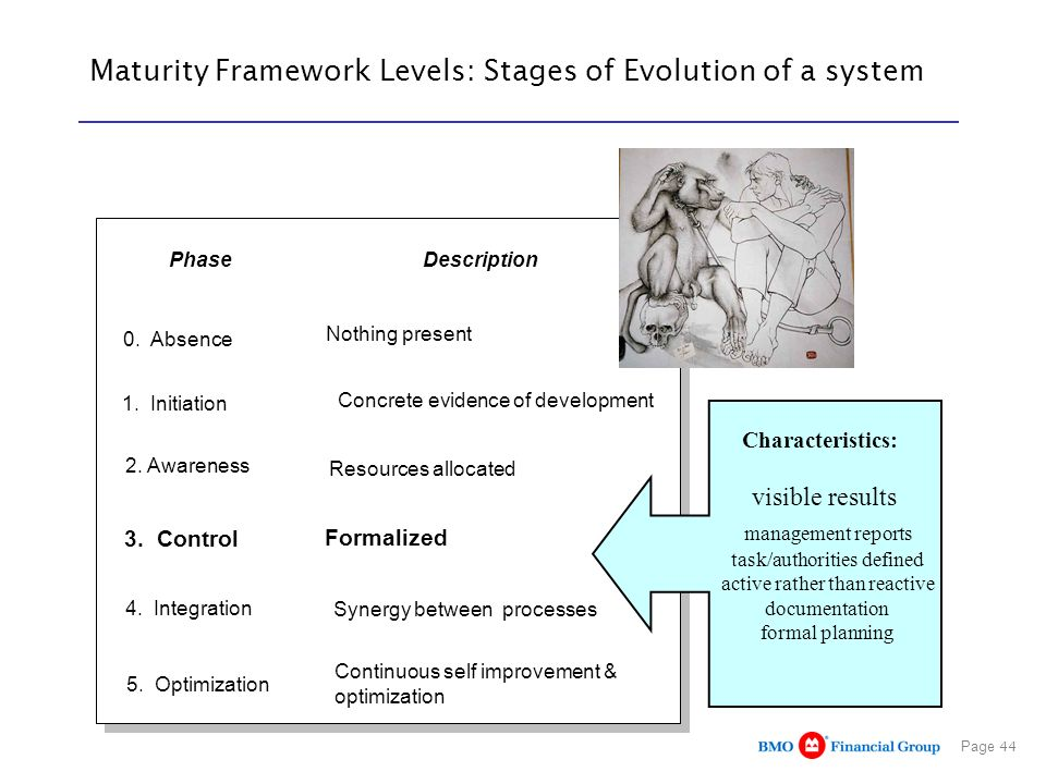 Maturity Framework Levels: Stages of Evolution of a system