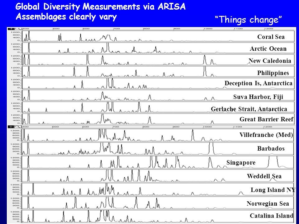 Things change Global Diversity Measurements via ARISA