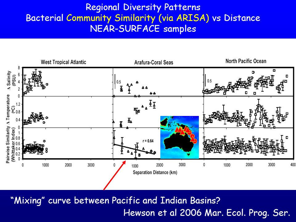 Regional Diversity Patterns