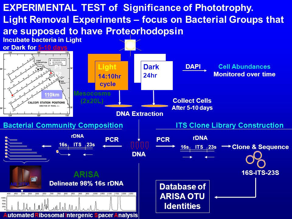 Database of ARISA OTU Identities