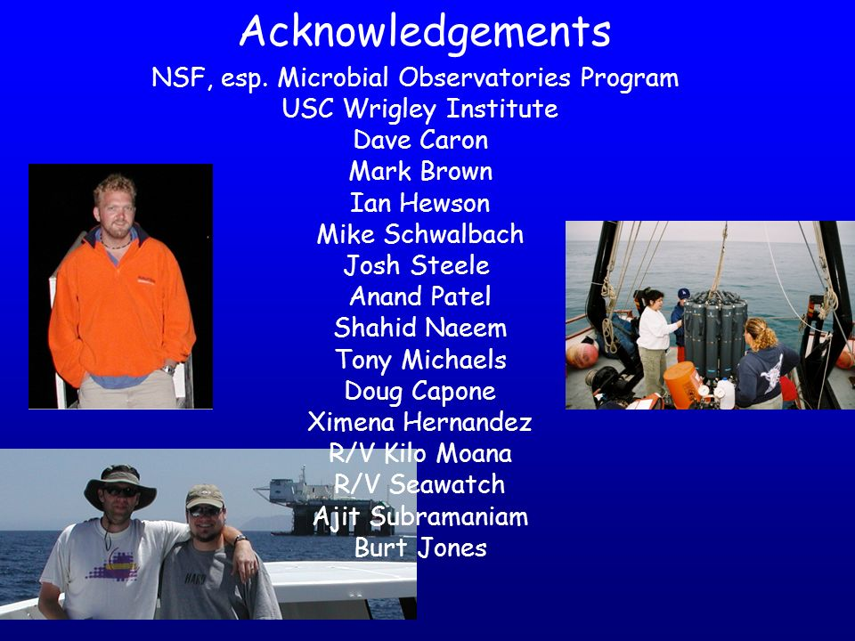NSF, esp. Microbial Observatories Program